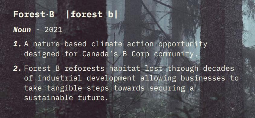 Forest-B-Sponsorship-2